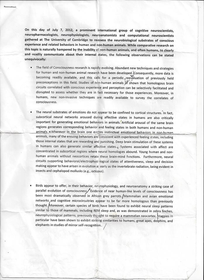 Cambridge Declaration Signed Original 1