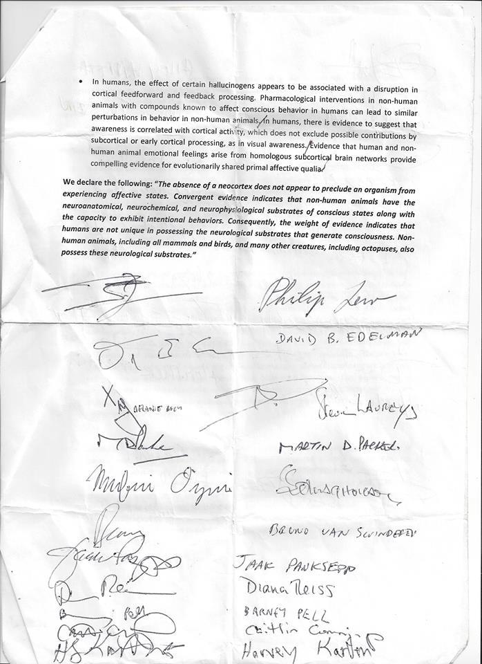 Cambridge Declaration Signed Original 2